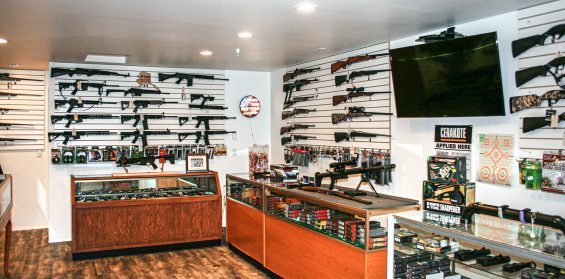 guns of alaska interior shot 2