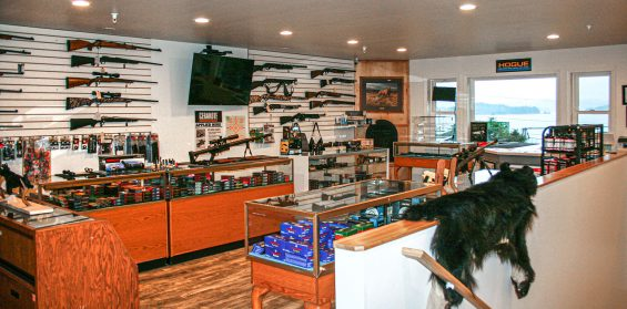 guns of alaska interior shot 1